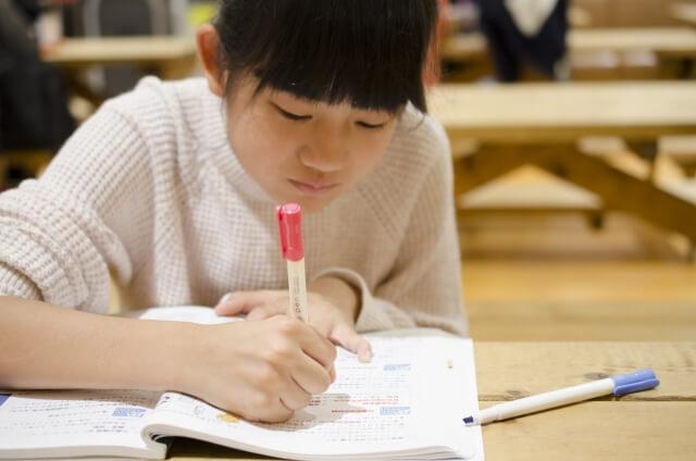 勉強している小学生